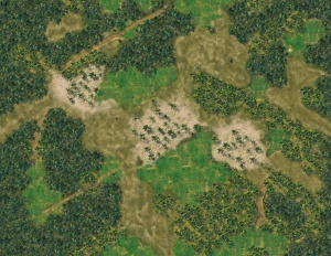 Jungle Map